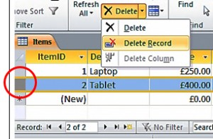 Delete A Record In A Datasheet 1